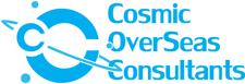 Cosmic Consultants